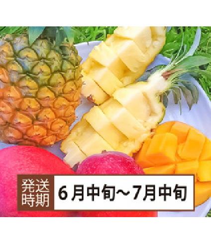 【コロナ緊急支援】沖縄県西表島産 パイン&マンゴーセット (パ700g×2.マ400g×2)