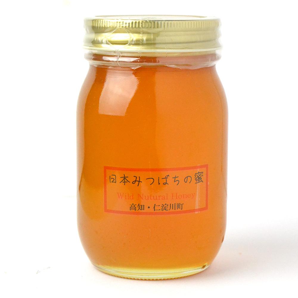 仁淀川町産 日本みつばちの蜜(600g)