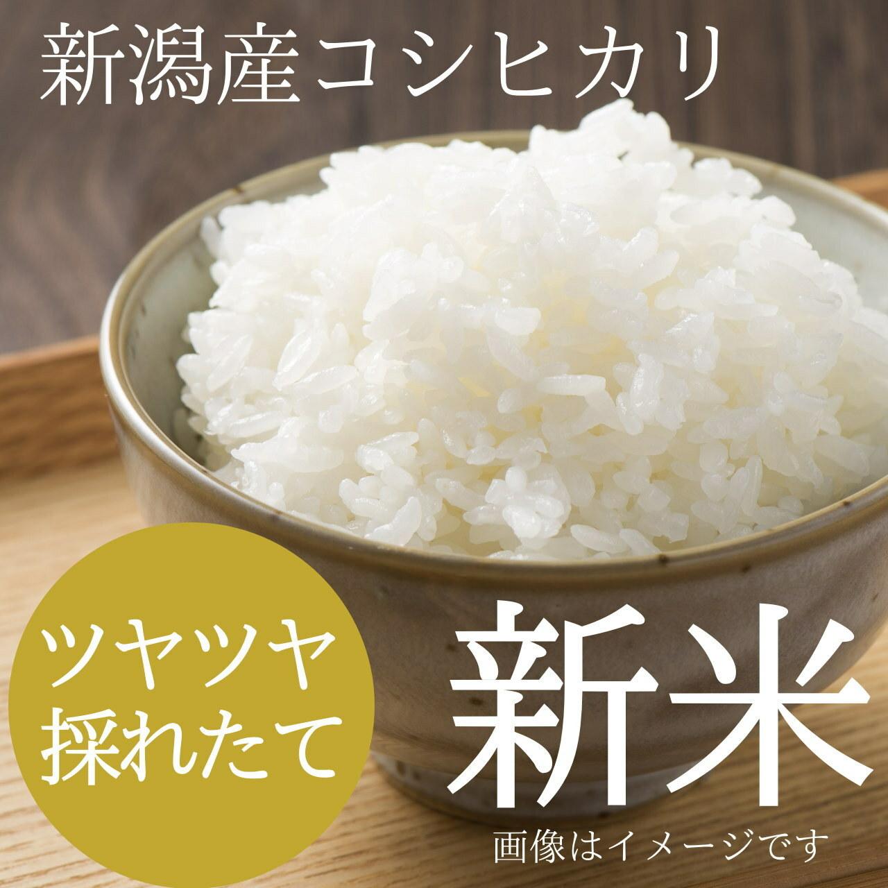 新米 新潟コシヒカリ 5kg (5キロ)新潟米 精白米 農家のお米 2019年 新潟県阿賀野産