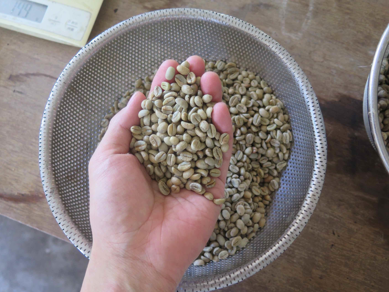 土鍋焙煎 ニドムブレンド コーヒー豆 100g - 画像2