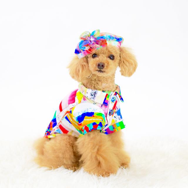 jibun-fuku DOG 【シャツドレス】DOGFC2018126_SM