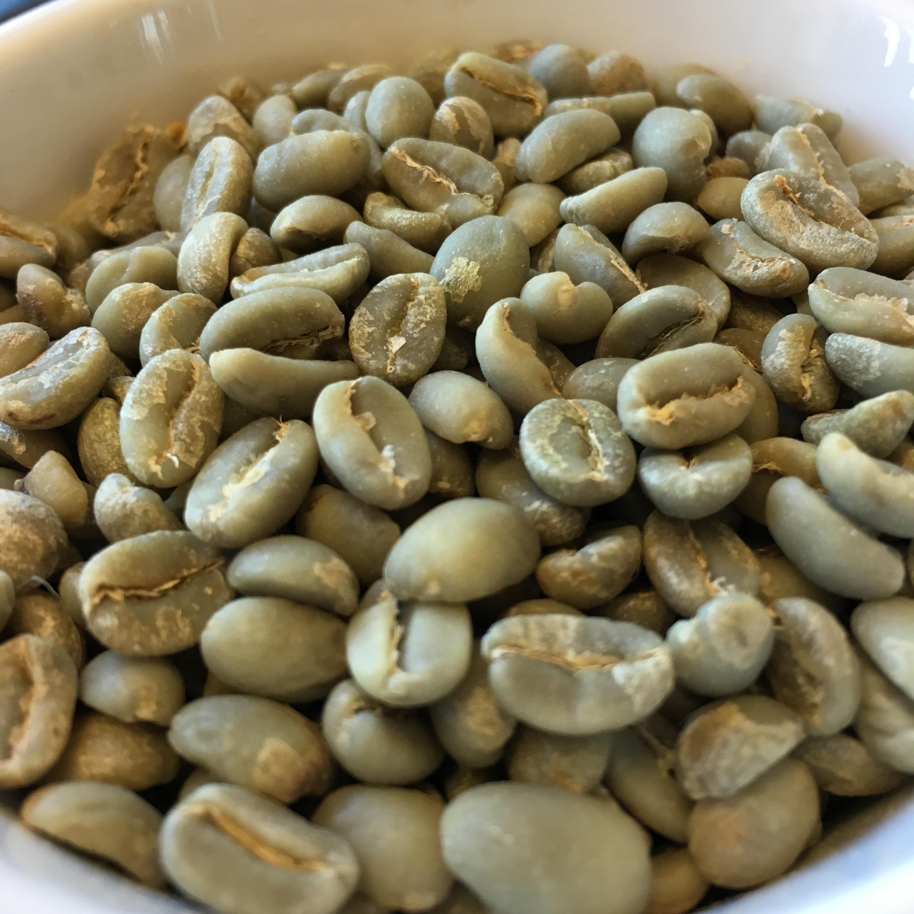 【コーヒー生豆・500g】エチオピア イルガチェフ コンガ ヲッシュド【ETHIOPIA COFFEE Yirgachef】