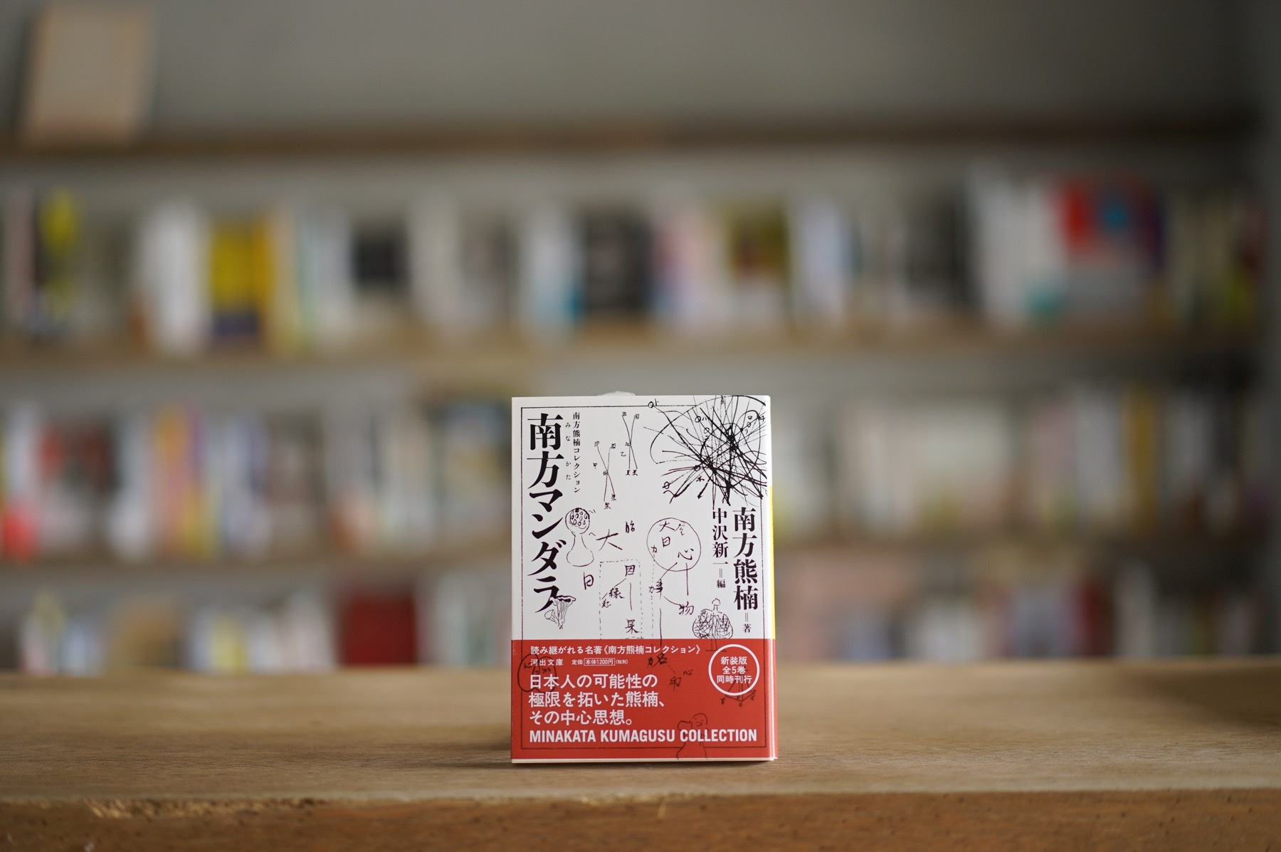 南方熊楠 編:中沢新一 『南方マンダラ』 (河出書房新社、2015)