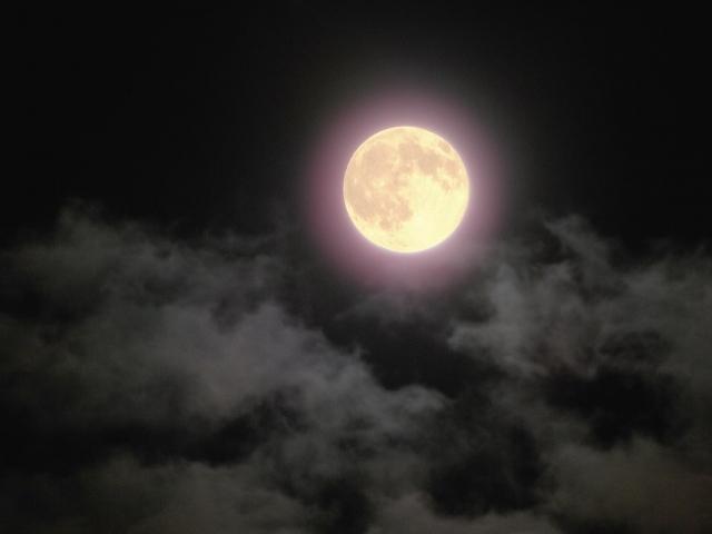 【Circle of Moon診断+説明(カウンセリング)】
