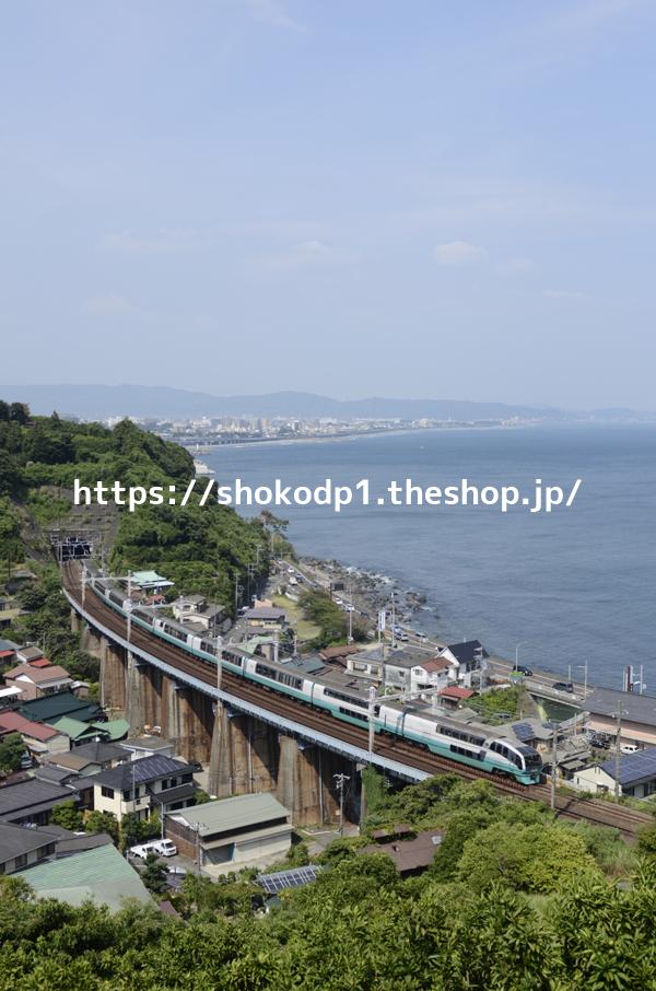 251系と海辺の街_DSC6141