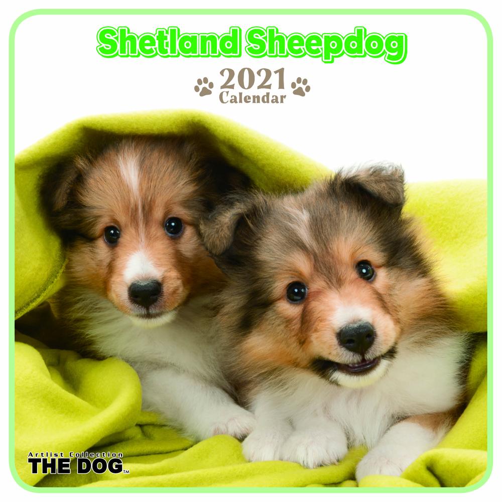 2021年 THE DOGミニカレンダー【ミニサイズ】 シェットランド・シープドッグ(ミニ)