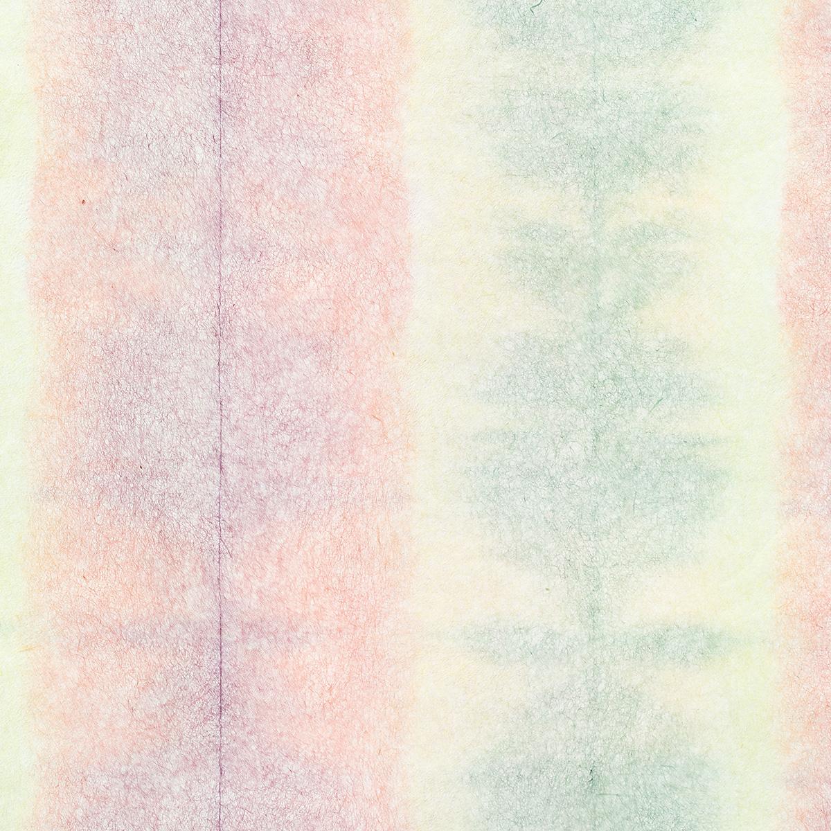 典具帖紙 板締め 薄口 No.5