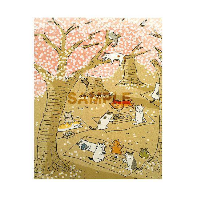 台湾ポストカード「櫻木猫道」