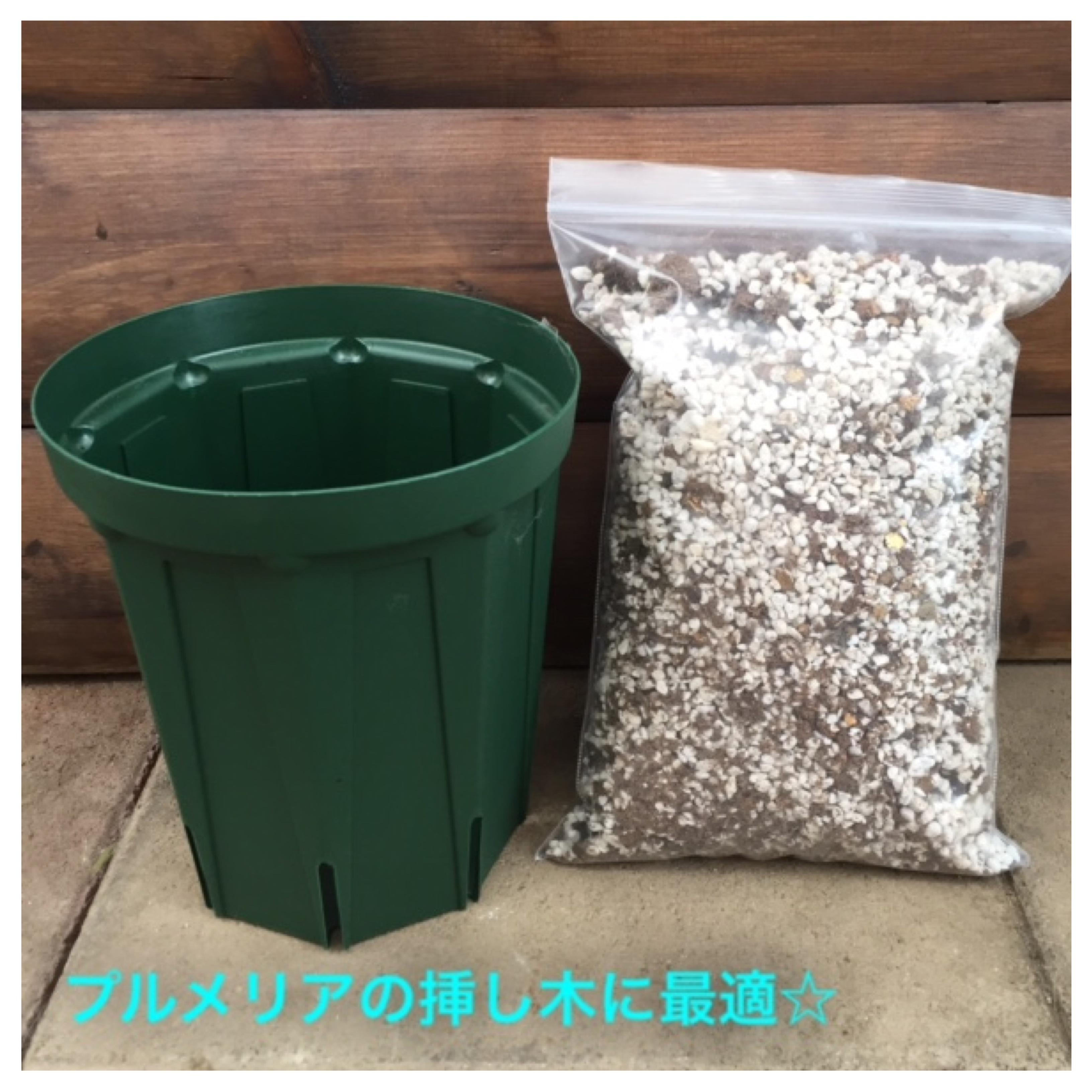 プルメリア専用培養土とスリット鉢のセット(4号ロングスリッド鉢)