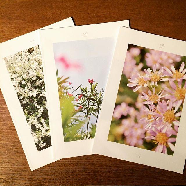リトルプレス「微花 kasuka(かすか) 1. / 秋・夏・春 3冊セット」 - 画像1