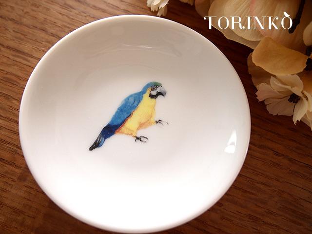 コンゴウインコ お皿 小サイズ(鳥の食器・オウム)