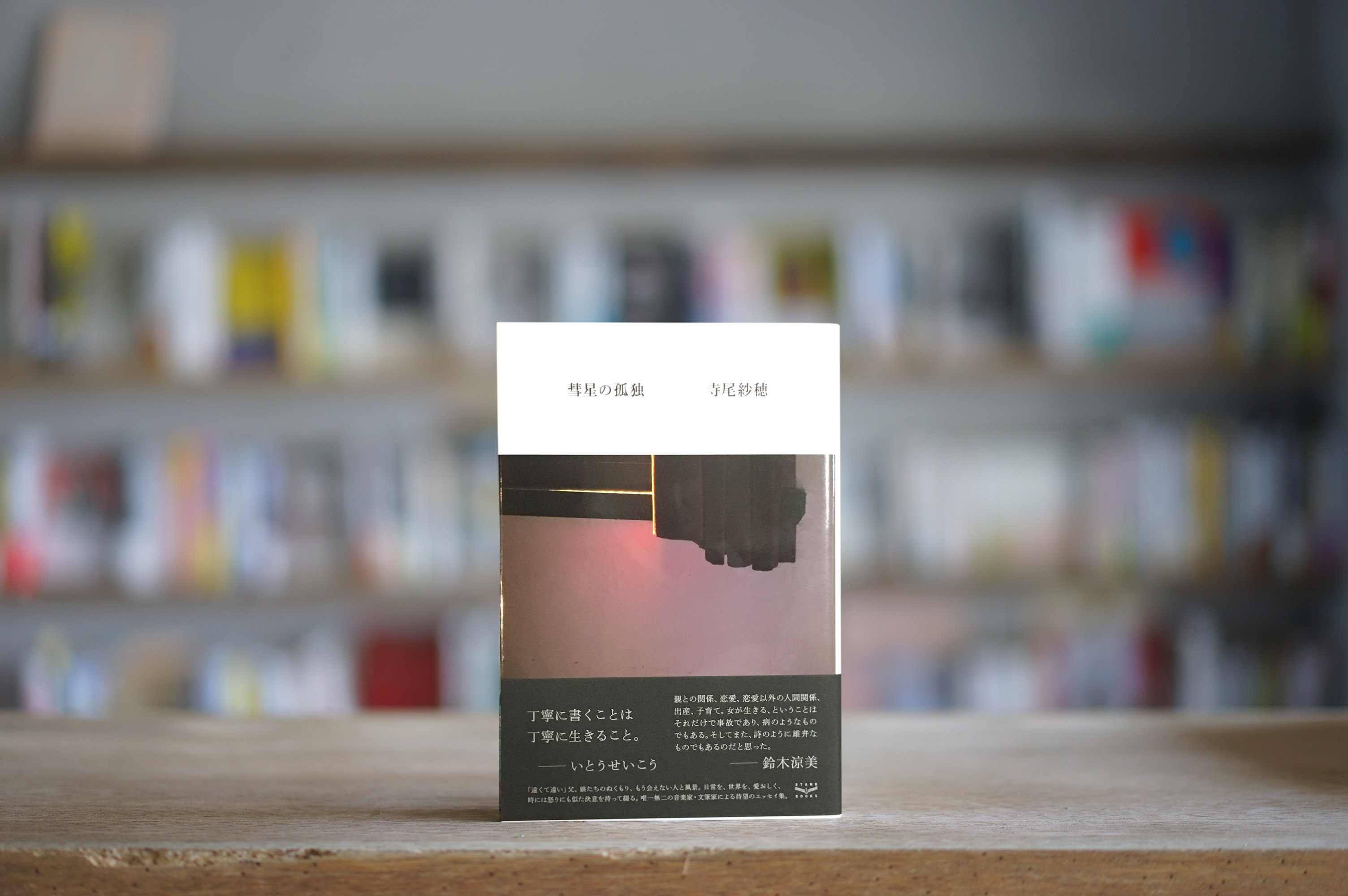 寺尾紗穂 『彗星の孤独』 (スタンド・ブックス、2018)