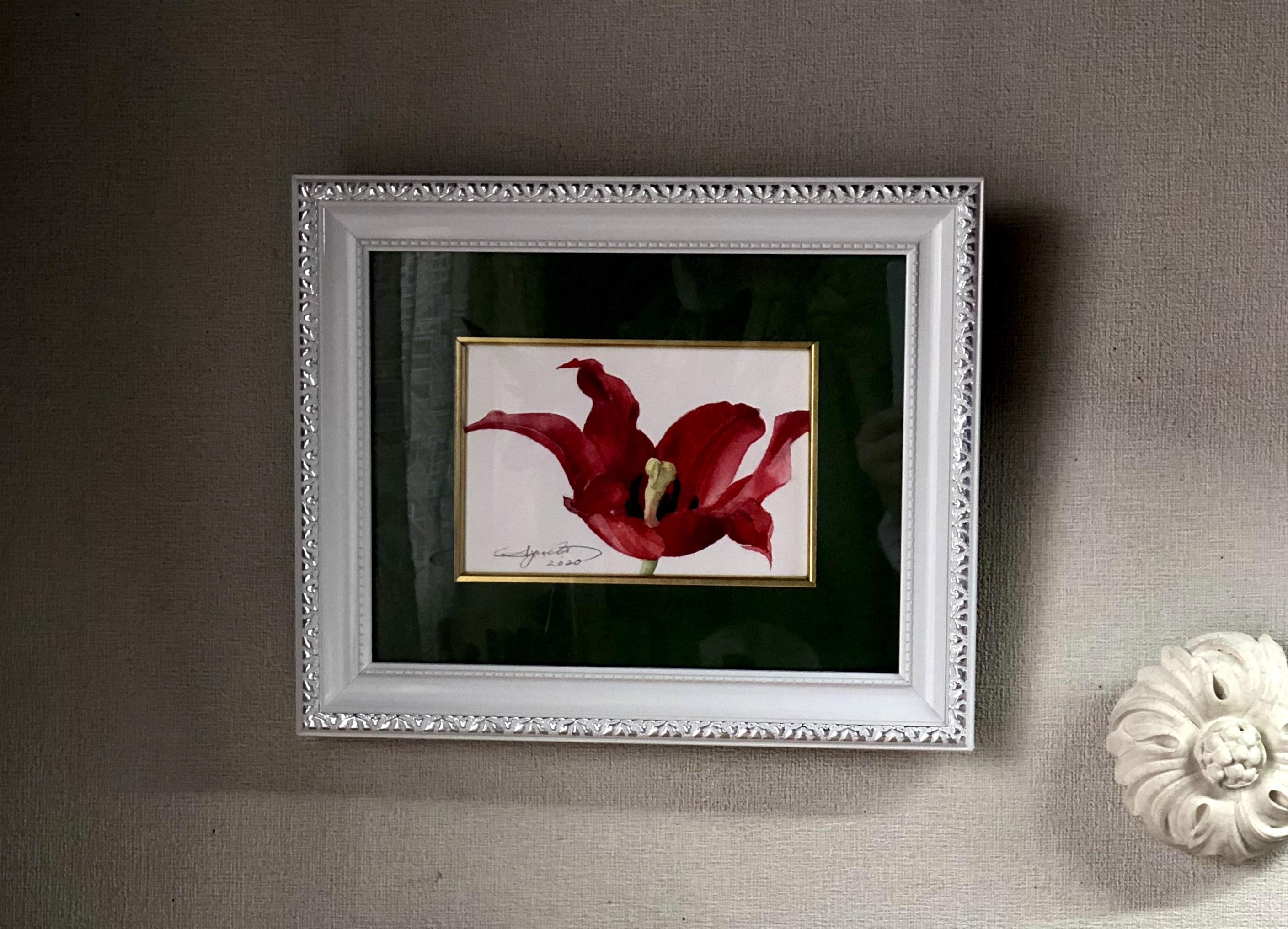 チューリップ「炎の恋Ⅰ」はがきサイズ