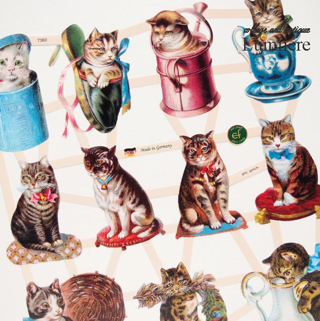 cat chromos