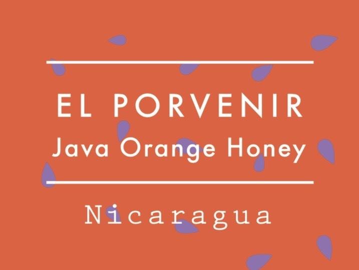 【お得!500g】ニカラグア /  El Porvenir JAVA Orange Honey