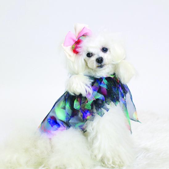jibun-fuku DOG 【ドレス】DOGDR2018168