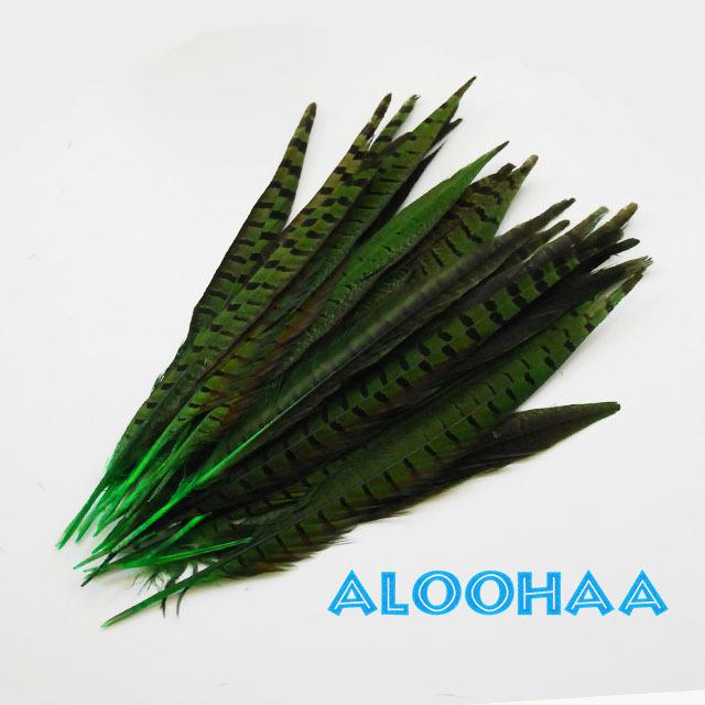ロングフェザー 【グリーン】30-35cm 5本 タヒチアン 衣装 材料 キジ 染め 羽根