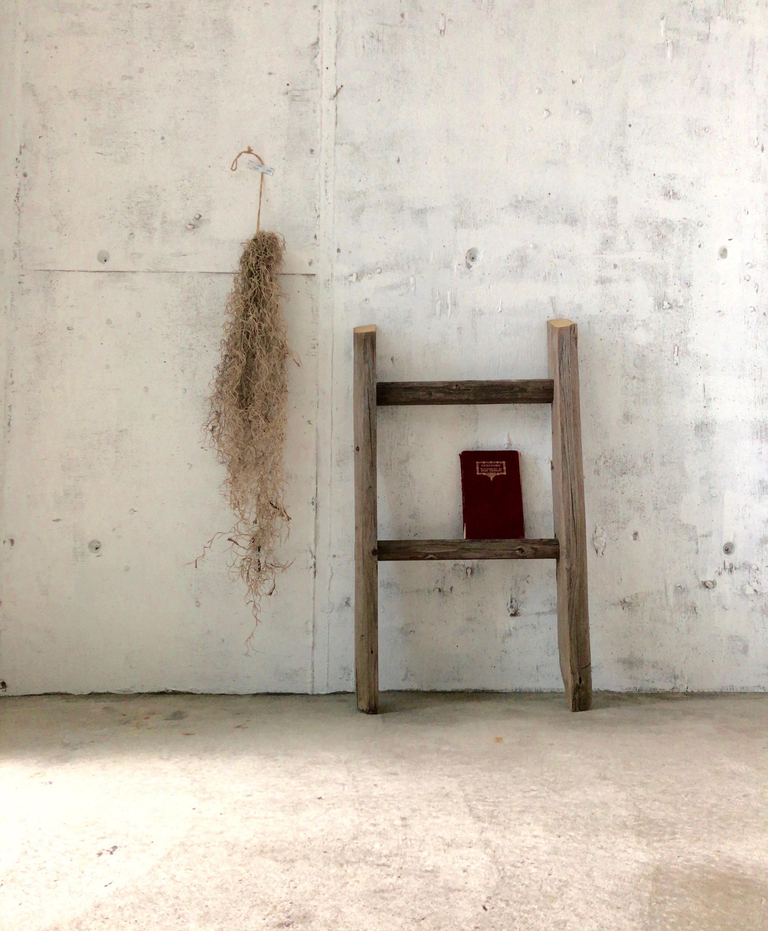 木製のディスプレイラダー[古家具]