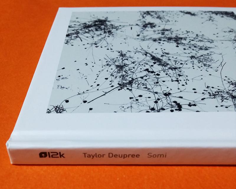 Taylor Deupree「Somi」(12k)
