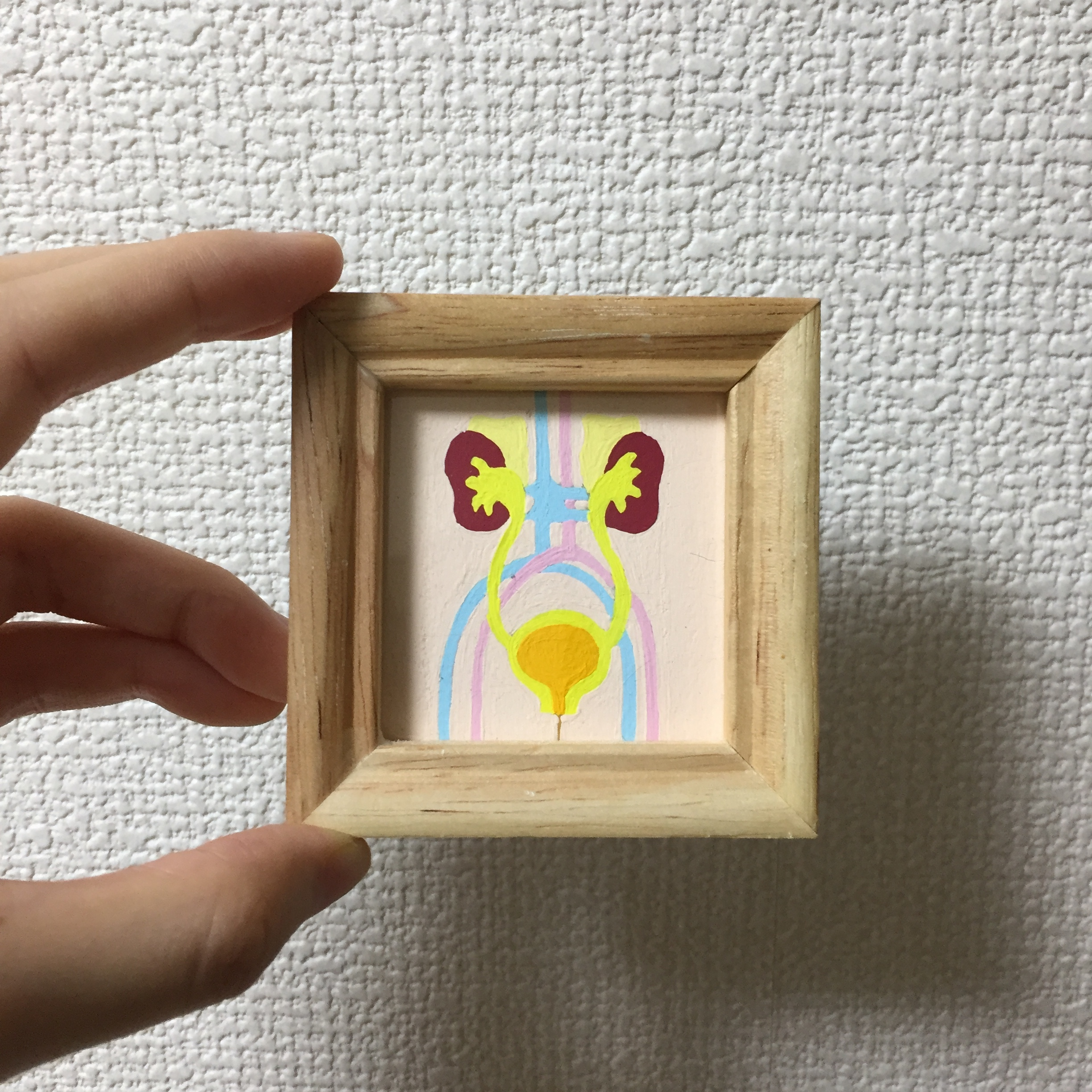 Kidney and bladder/腎臓と膀胱 / 50mm×50mm / Acrylic painting / Original Drawing