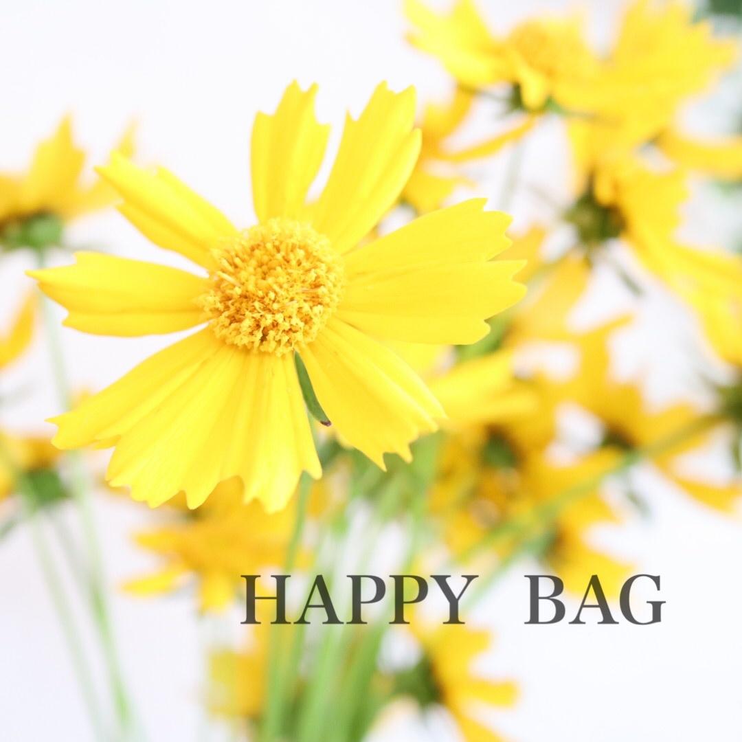 春の「HAPPY BAG」