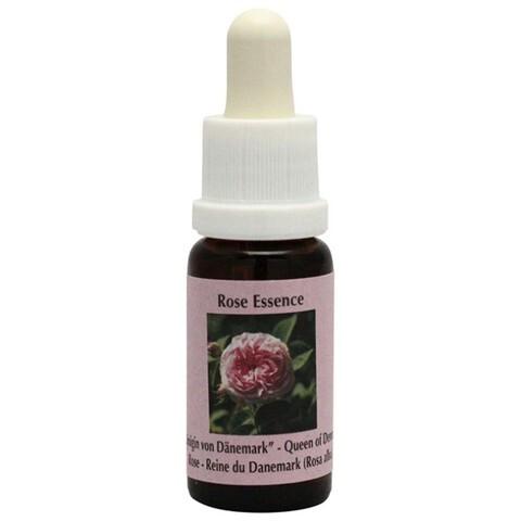 プロバンスローズ[Provence Rose]#10