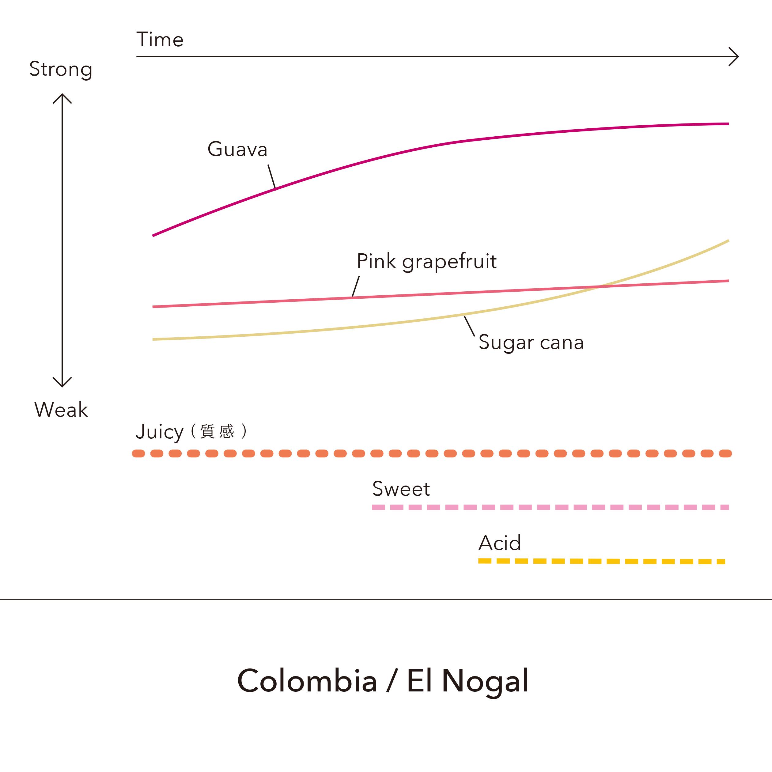 Colombia - El Nogal / 150g