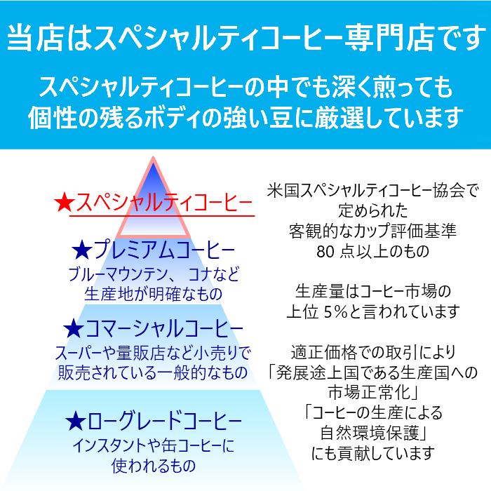 ◆定期便◆《白くまプラン 400g》深煎×フルーティ 華やかなコーヒーを楽しみたい人へ 2980円相当 → 月額2400円 ※送料無料