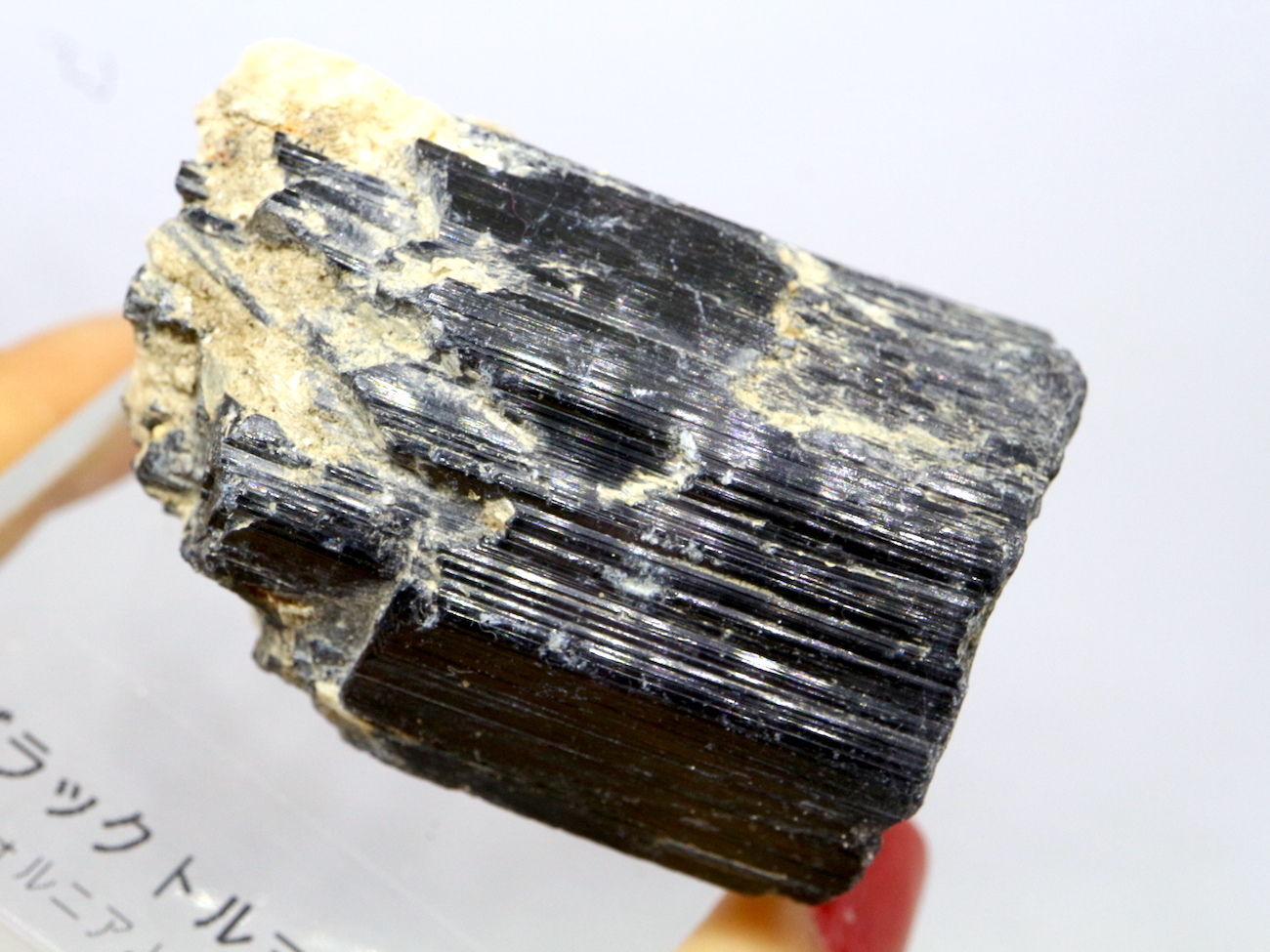 自主採掘!カリフォルニア産ブラックトルマリン 97,6g T107 天然石 鉱物 標本 原石