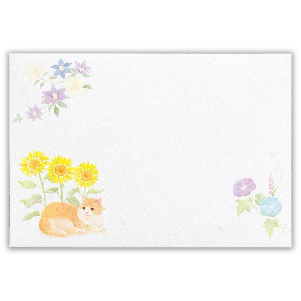 猫封筒(猫と涼の花)