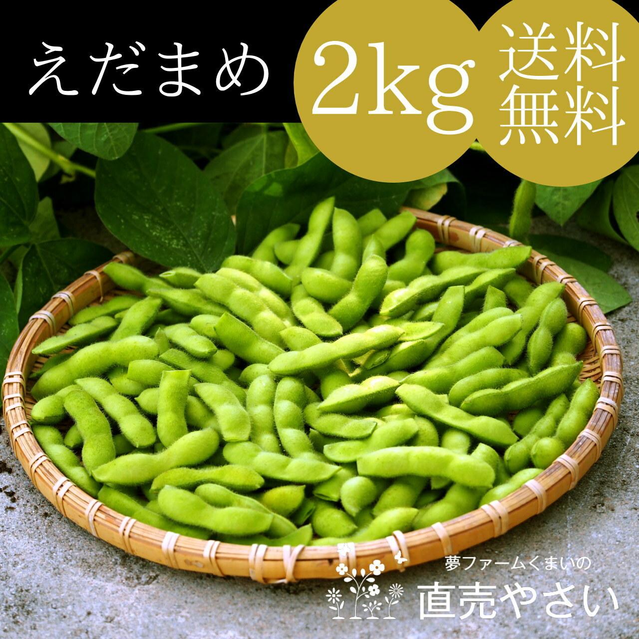 美味しい 枝豆 2kg 送料無料 朝採り - 農家の野菜通販