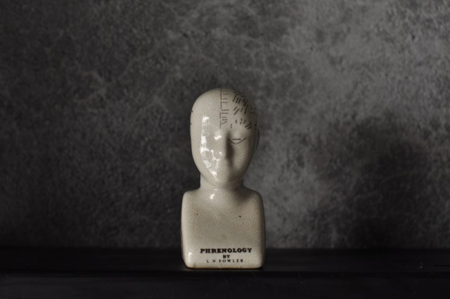 Phrenology Head2