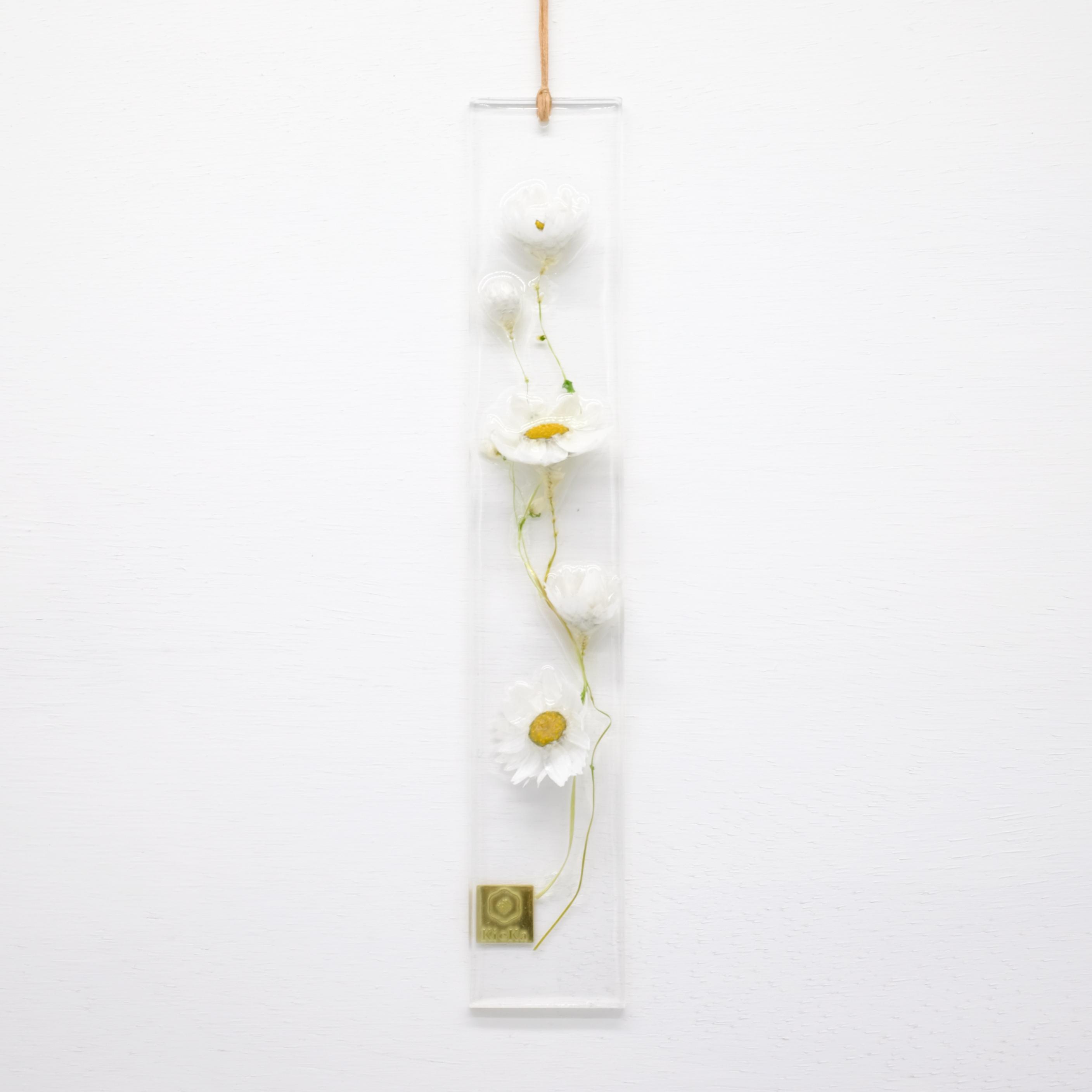 dried flower S ローダンセ ホワイト 限定 S