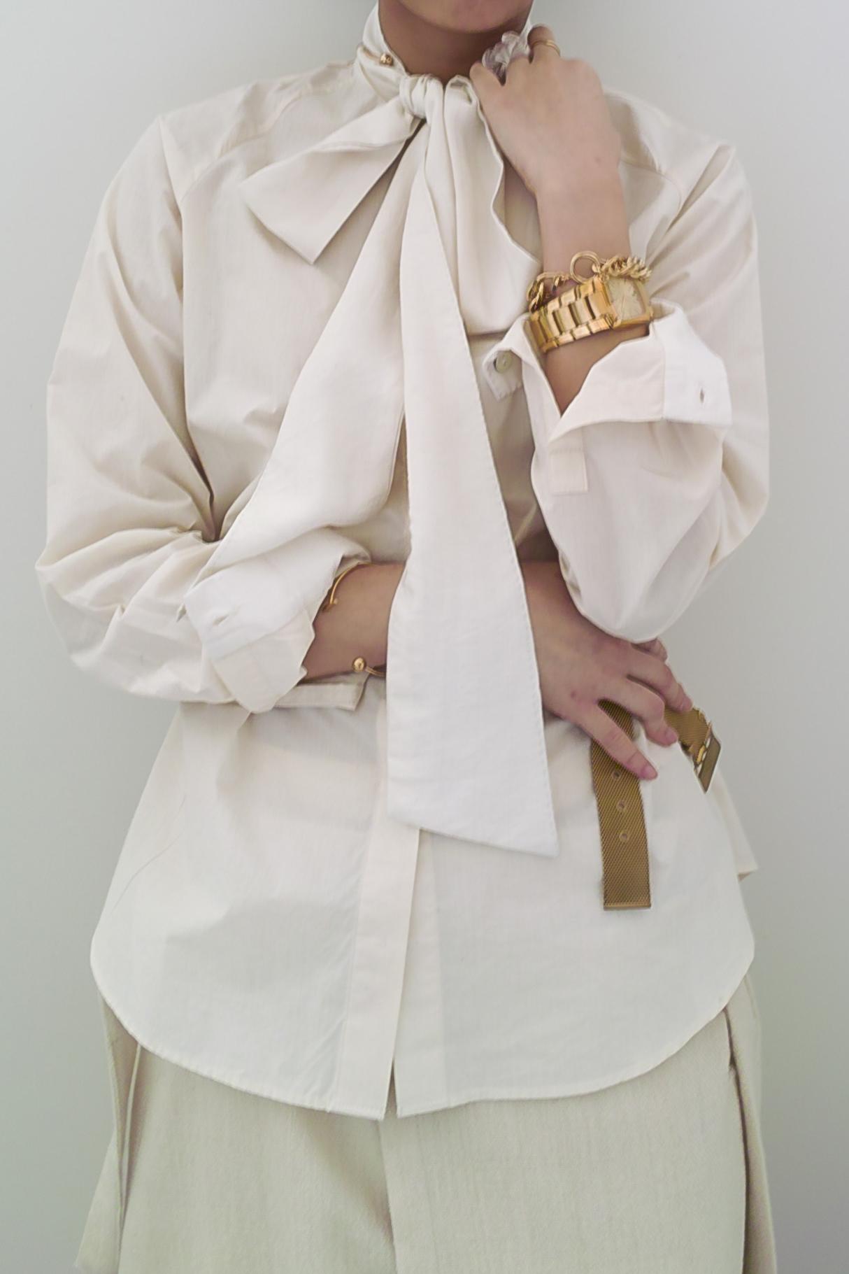 Raglan Sleeve Bowtie Blouse