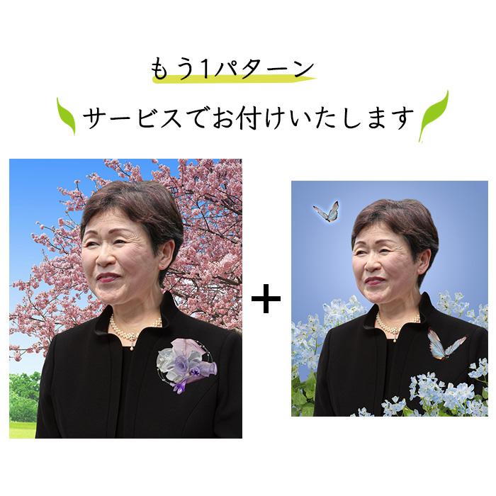 遺影制作 女性 黒フォーマル 蝶々 河津桜 D-007