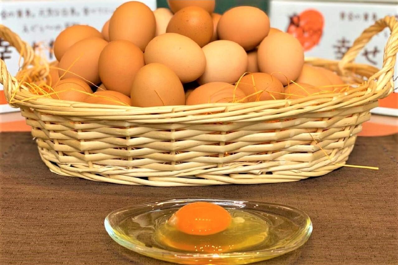 【養鶏場直送】朝採れ幸せたまご(生卵30個)※賞味約4週間