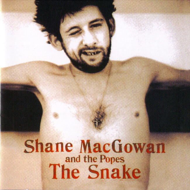 Shane MacGowan And The Popes - The Snake - 画像1