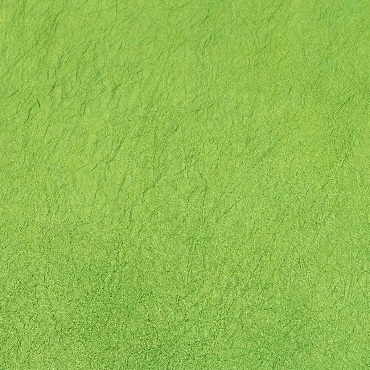 王朝のそめいろ 薄口 30番 浅緑