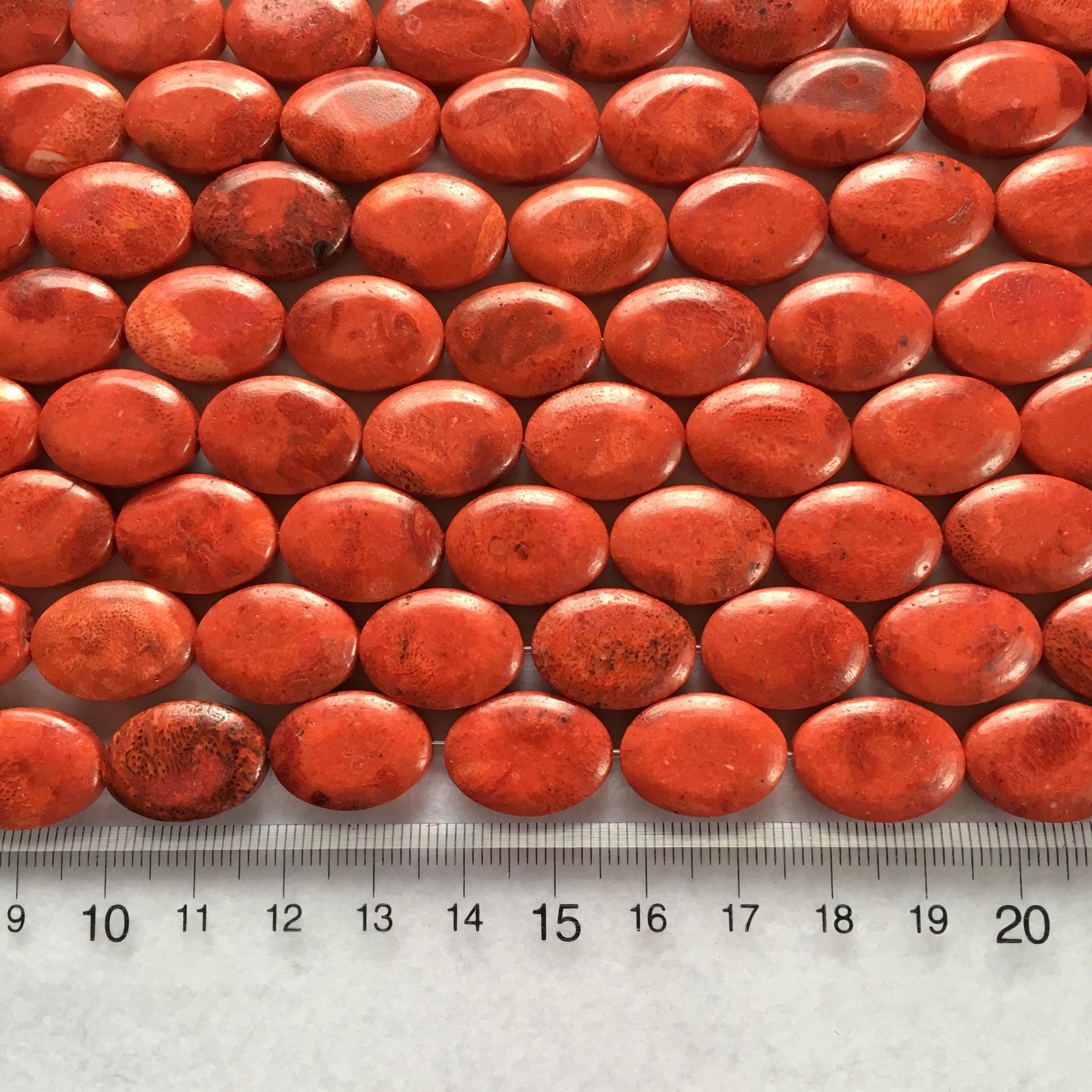 スポンジサンゴ オーバル型 約18x13mm 連材【190190】