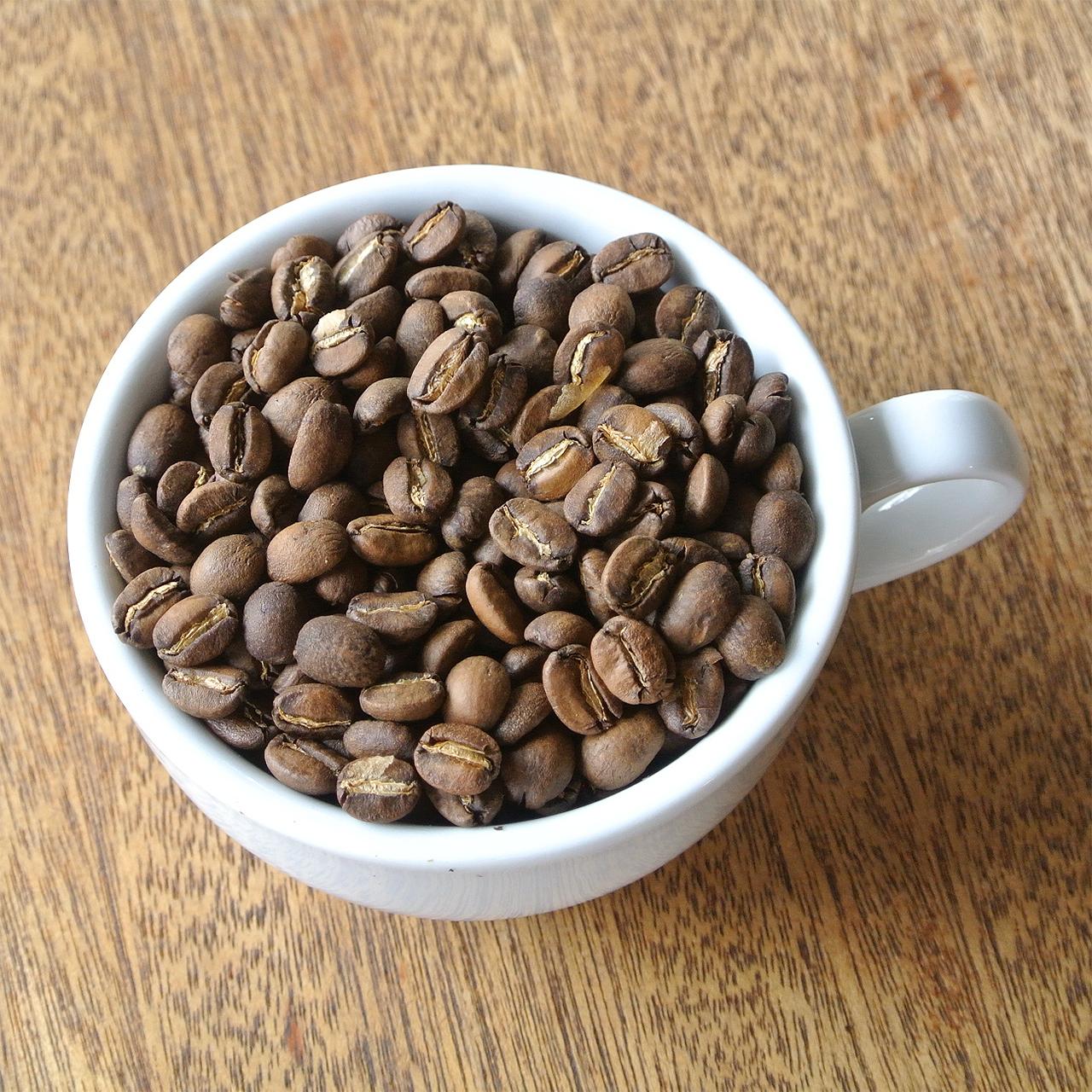 東ティモール マイクロロット フェルナンドさんの村コーヒー 浅煎り 100g