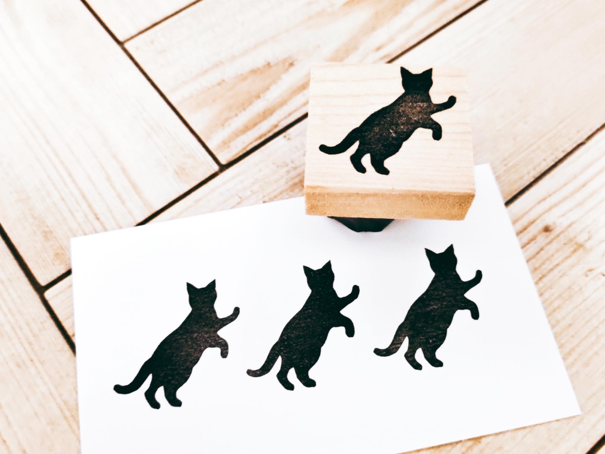 猫④「バリバリ」