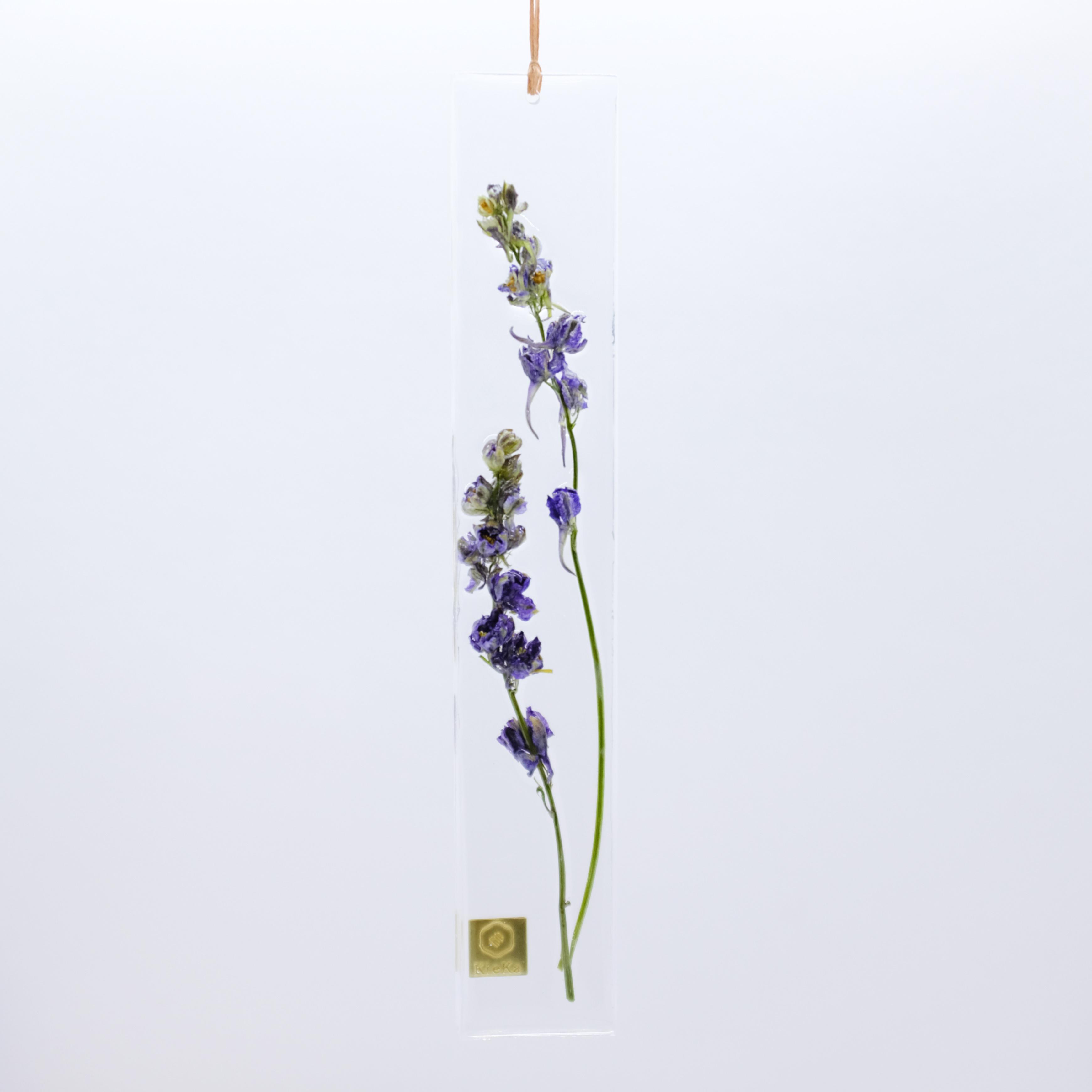 dried flower S ラークスパー ブルー