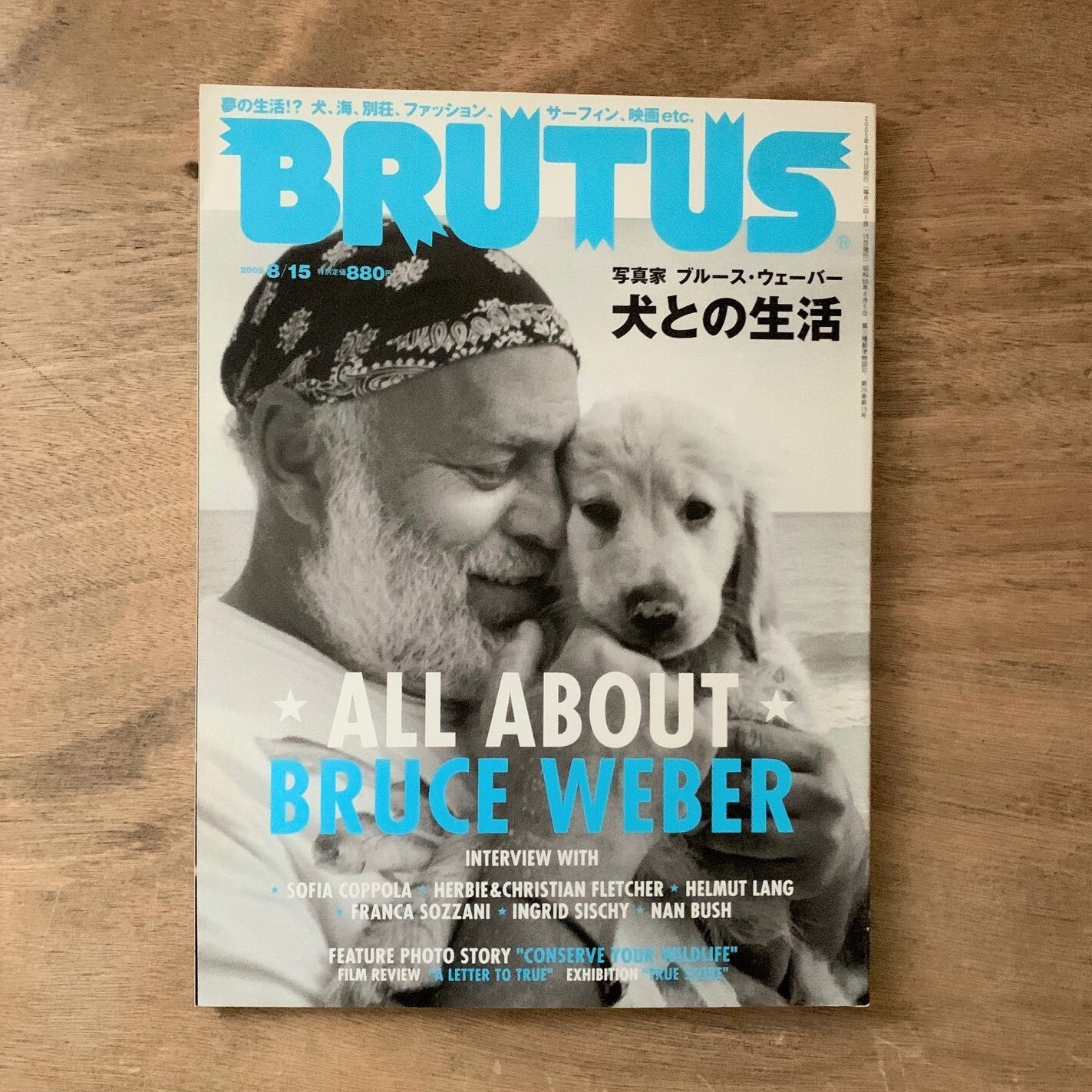 ALL ABOUT BRUCE WEBER /  BRUTUS  NO.576