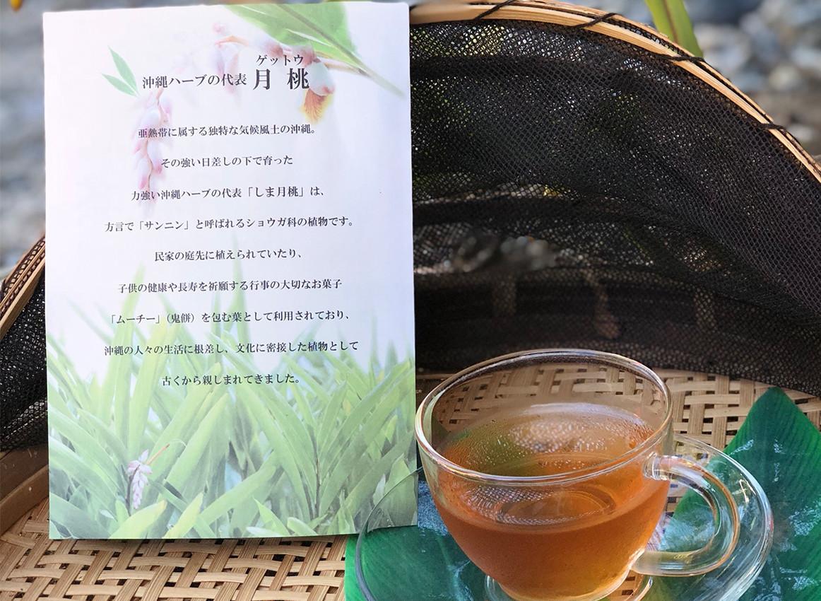 しま 月桃茶 2g×12包