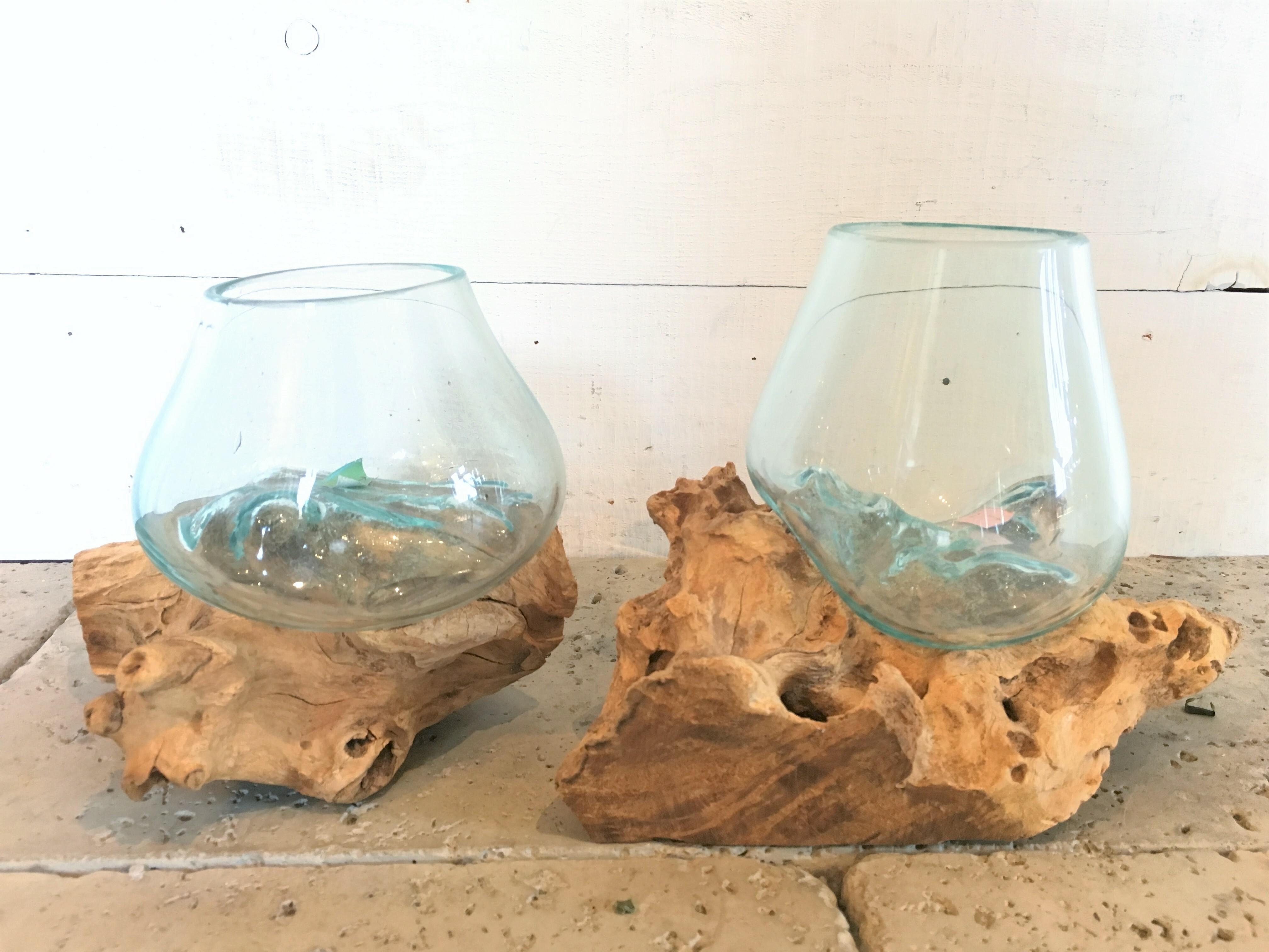ガラス鉢 流木プランター
