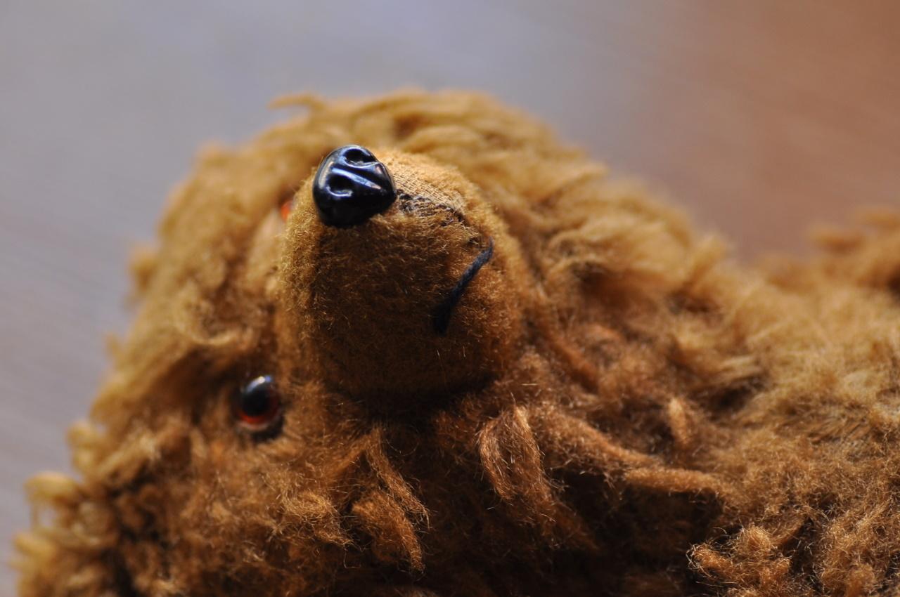 Teddybear5