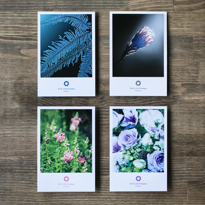 【#Still Life Flowers Project】ポストカード未来セット