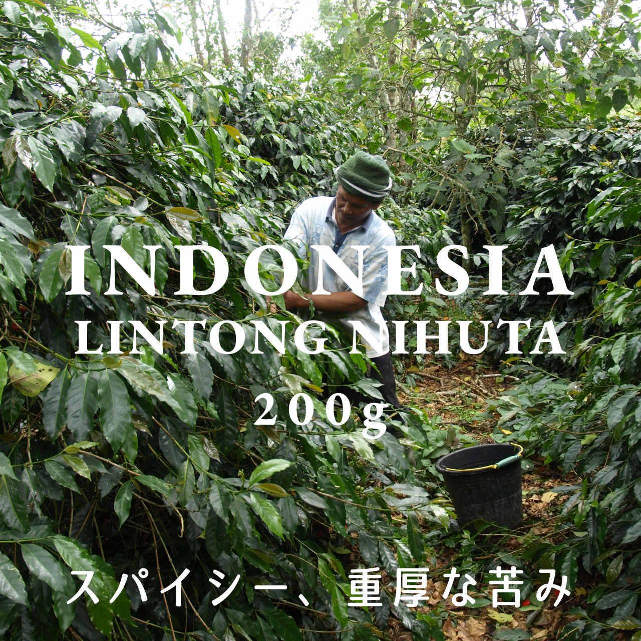 MANDHELING|SUMATRA LINTONG NIHUTA|コーヒー豆 200g