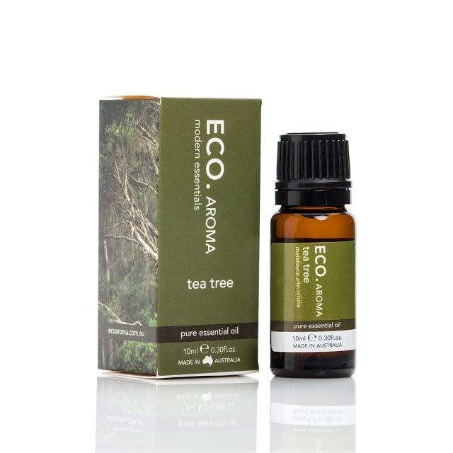 【eco./エコ】ティートリー Essential Oil 10ml