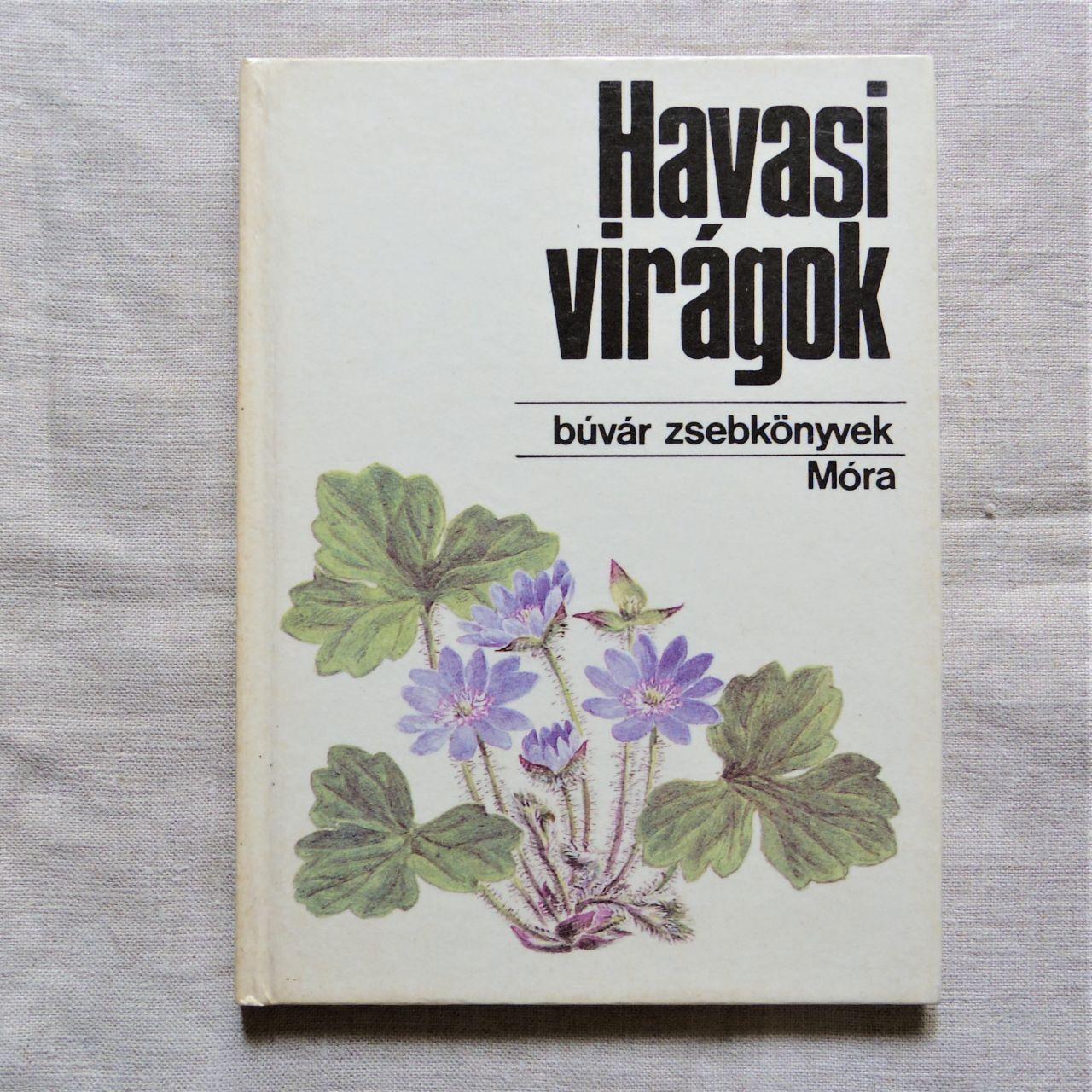 #エア蚤の市 ハンガリーのポケット図鑑⑧